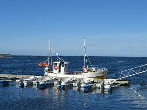 Freidig-Hafen
